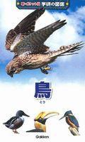 新ポケット版学研の図鑑 (5) 鳥