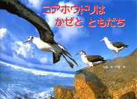 コアホウドリはかぜとともだち