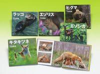 ネイチャーフォトストーリー 北国の野生動物(全5巻)