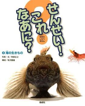 せんせい!これなあに?(2) 海の生きもの