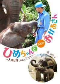 ひめちゃんとふたりのおかあさん —人間に育てられた子ゾウ—