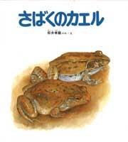さばくのカエル