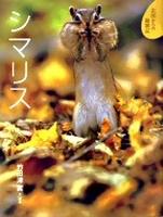 北国からの動物記(3) シマリス