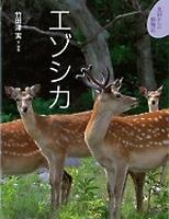 北国からの動物記(4) エゾシカ
