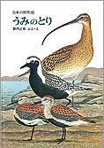 うみのとり 日本の野鳥(6)