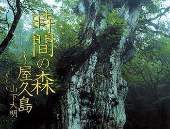 時間の森〜屋久島