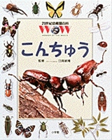 21世紀幼稚園百科 こんちゅう