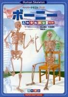 ボーニー人体骨格模型 改訂版     Human skeleton
