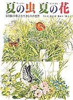 夏の虫 夏の花