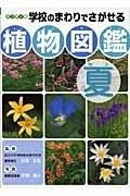 学校のまわりでさがせる植物図鑑 ハンディ版 夏